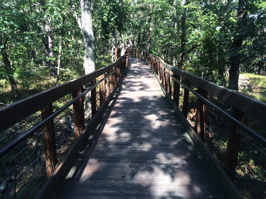 Bald Rock Trail Exploring Alabama